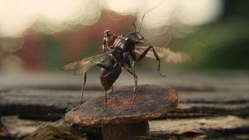 https://static.tvtropes.org/pmwiki/pub/images/ant_man.jpg