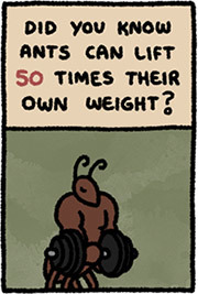 http://static.tvtropes.org/pmwiki/pub/images/ants_weight.jpg
