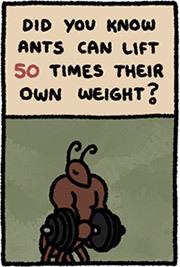 https://static.tvtropes.org/pmwiki/pub/images/ants_weight.jpg