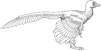 http://static.tvtropes.org/pmwiki/pub/images/archaeopteryx2_-_copia_1408.png