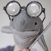 https://static.tvtropes.org/pmwiki/pub/images/avatar_wizard_shark9429.png