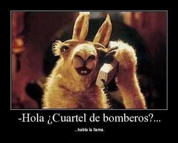 https://static.tvtropes.org/pmwiki/pub/images/babfb89c57d56235f9171f19fcc11a73_llama_llama_llamas.jpg