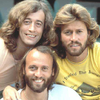 https://static.tvtropes.org/pmwiki/pub/images/beegees46.png