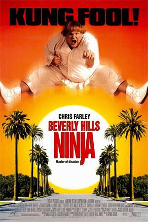 https://static.tvtropes.org/pmwiki/pub/images/beverly_hills_ninja.png