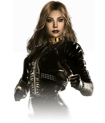 https://static.tvtropes.org/pmwiki/pub/images/black_canary_8.png