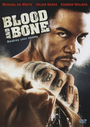 http://static.tvtropes.org/pmwiki/pub/images/blood_and_bone_3491.jpg