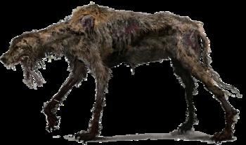 https://static.tvtropes.org/pmwiki/pub/images/bloodborne_rabid_dog.png