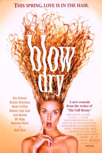 http://static.tvtropes.org/pmwiki/pub/images/blow_dry_2001_poster.jpg