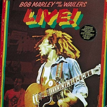 https://static.tvtropes.org/pmwiki/pub/images/bob_marley_live_7435.jpg