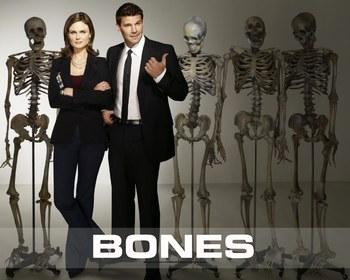 Bones tv series pony fetish