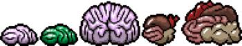 https://static.tvtropes.org/pmwiki/pub/images/brain_0.png