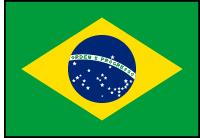 https://static.tvtropes.org/pmwiki/pub/images/brazil_flag_635.png
