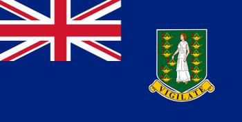 https://static.tvtropes.org/pmwiki/pub/images/british_virgin_islands_flag.png