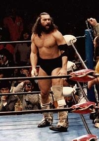 http://static.tvtropes.org/pmwiki/pub/images/bruiserbrody_794.jpg