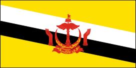 http://static.tvtropes.org/pmwiki/pub/images/brunei_flag_5798.png