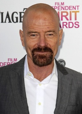 http://static.tvtropes.org/pmwiki/pub/images/bryan-cranston-2013-film-independent-spirit-awards-01_4778.jpg