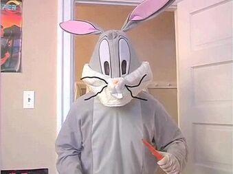 https://static.tvtropes.org/pmwiki/pub/images/bugs_bunny_in_avgn.jpg