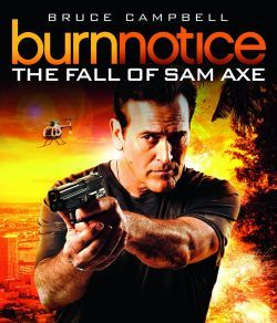 http://static.tvtropes.org/pmwiki/pub/images/burn_notice_axe_poster.jpg