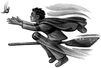 http://static.tvtropes.org/pmwiki/pub/images/c15--quidditch-final_8870.jpg