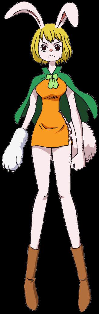 https://static.tvtropes.org/pmwiki/pub/images/carrot_anime.png