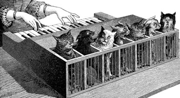 http://static.tvtropes.org/pmwiki/pub/images/cat-piano_4126.jpg