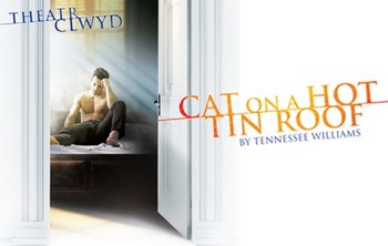 http://static.tvtropes.org/pmwiki/pub/images/cat_on_a_hot_tin_roof_theatre.jpg