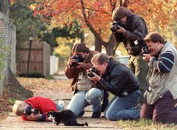 https://static.tvtropes.org/pmwiki/pub/images/cat_paparazzi.png