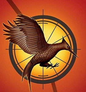 https://static.tvtropes.org/pmwiki/pub/images/catching_fire_cover.jpg