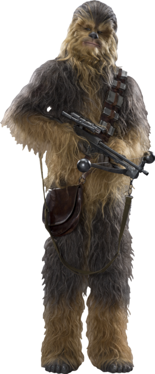 https://static.tvtropes.org/pmwiki/pub/images/chewbacca.png