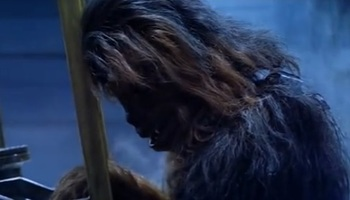 https://static.tvtropes.org/pmwiki/pub/images/chewbacca_mourns.jpg