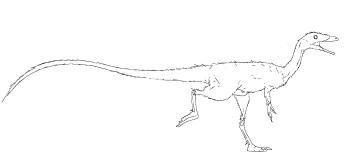 https://static.tvtropes.org/pmwiki/pub/images/compsognathus_-_copia_4382.jpeg