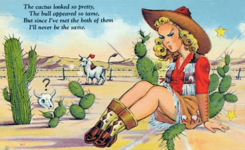 https://static.tvtropes.org/pmwiki/pub/images/cowgirl_cactus_9.png