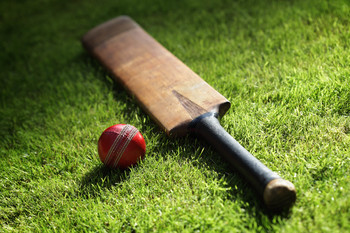 Cricket / Useful Notes - TV Tropes