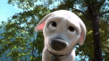 https://static.tvtropes.org/pmwiki/pub/images/cute_puppy_face.jpg