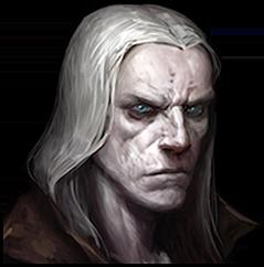 https://static.tvtropes.org/pmwiki/pub/images/d3_necromancer_male_8b.png