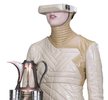 https://static.tvtropes.org/pmwiki/pub/images/decraniated_swct.png