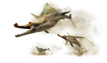 Monster hunter third generation monsters characters tv for Piscine wyvern