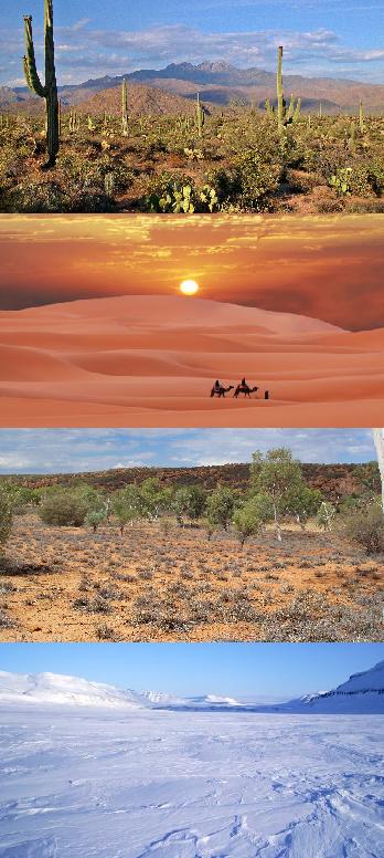 http://static.tvtropes.org/pmwiki/pub/images/deserts.png