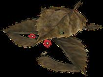 https://static.tvtropes.org/pmwiki/pub/images/desiccated_skitter_leaf.png
