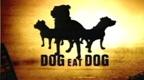 http://static.tvtropes.org/pmwiki/pub/images/dogeatdog_3949.jpg