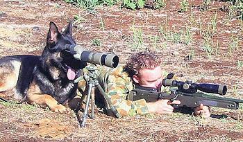 http://static.tvtropes.org/pmwiki/pub/images/dogspotter_9732.jpg