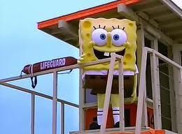spongebob squarepants s 3 e 1 quotthe algaes always greener