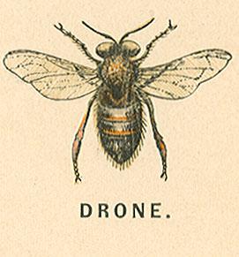 http://static.tvtropes.org/pmwiki/pub/images/drone.jpg
