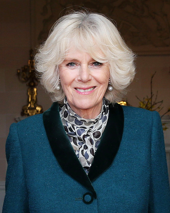 https://static.tvtropes.org/pmwiki/pub/images/duchess_of_cornwall_in_2014_cropped.jpg