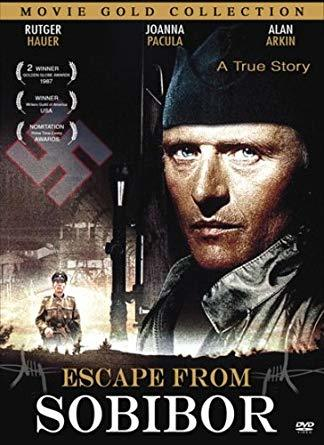 Escape From Sobibor Book