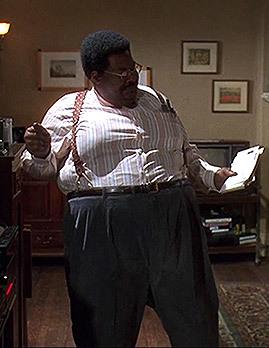 Professional Fat Suit