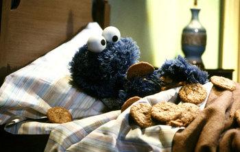 http://static.tvtropes.org/pmwiki/pub/images/fb2c9_cookiemonsterbedtime.jpg