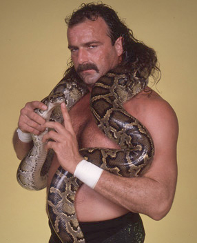 http://static.tvtropes.org/pmwiki/pub/images/feather-boa-constrictor2_7207.jpg