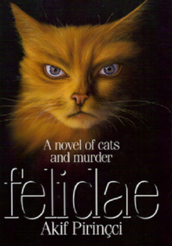 https://static.tvtropes.org/pmwiki/pub/images/felidae_8.png