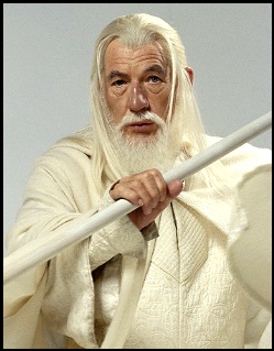 https://static.tvtropes.org/pmwiki/pub/images/fellowship_gandalf.jpg